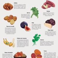 Lámina: Alimentos frutas y verduras