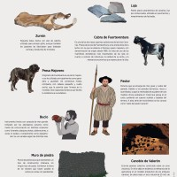 Lámina: Aborigen: campo