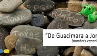 De Guacimara a Jonay