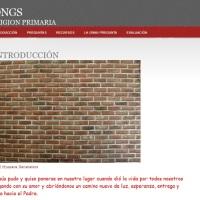 Las ONGs