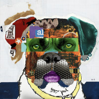 Técnica artística, el collage
