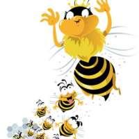 La geometría en las abejas