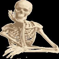 Aprende los huesos