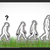 Evolución humana: árbol de familia