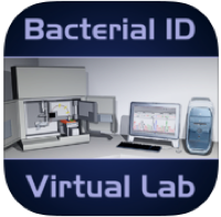 Bacterial ID Virtual Lab