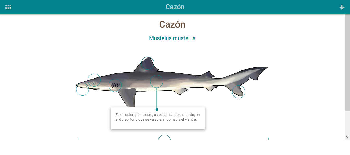 HTML5: Cazón » Recursos educativos digitales