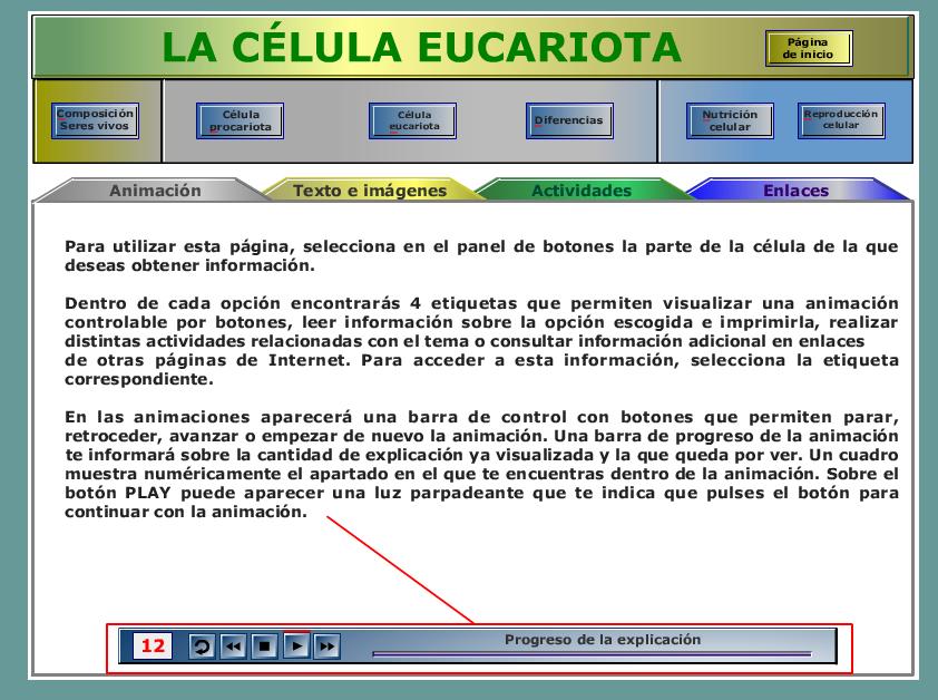 La célula eucariota. » Recursos educativos digitales