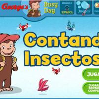 Contando insectos