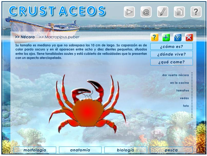 Crustáceos » Recursos educativos digitales
