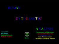 Human Cytogenetic Analysis.