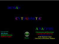 Human Cytogenetic Analysis.