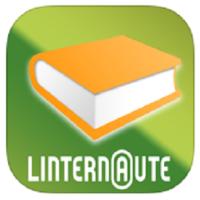 Dictionnaire de l'internaute