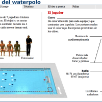 Deportes acuáticos: El mundo del waterpolo