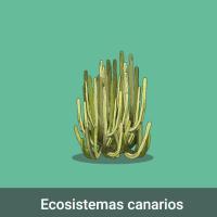 Acomola: Ecosistemas canarios