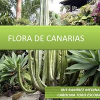 Flora de las Islas Canarias