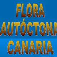 Flora autóctona de Canarias