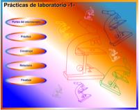Microscopio Virtual de Genmagic