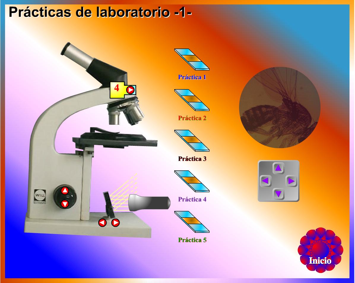 http://www.genmagic.net/fisica/pl1c.swf