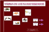Página de los invertebrados.
