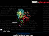 Manual de Biología Celular