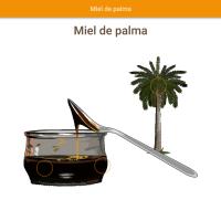 HTML5: miel de palma
