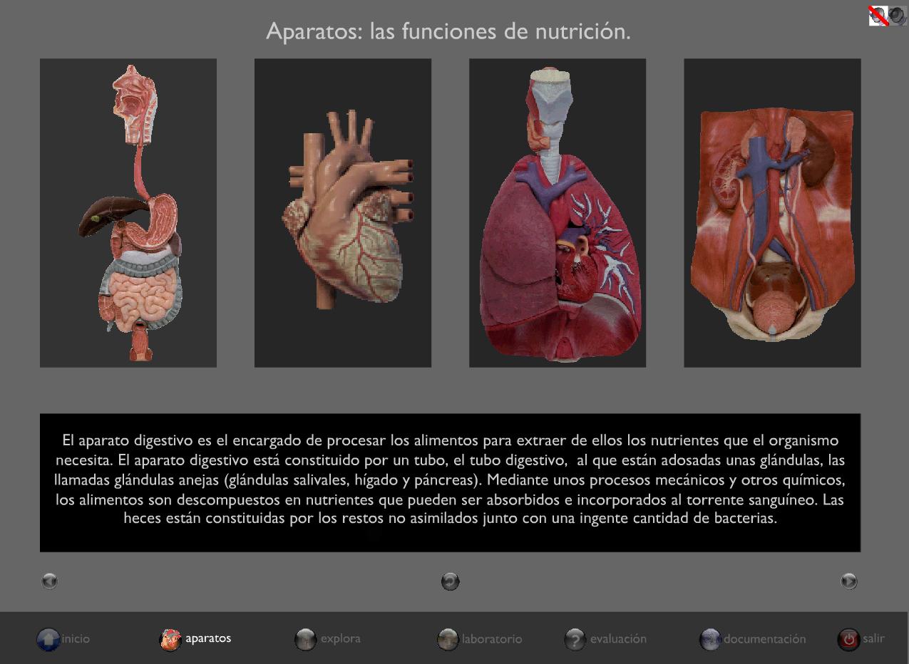 Nuestro cuerpo en un clic. » Recursos educativos digitales