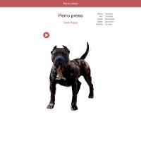 HTML5: Perro de presa