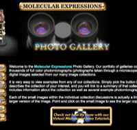 Molecular Expressions Photo Gallery
