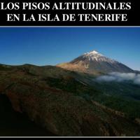 Pisos altitudinales en Tenerife