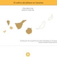 HTML5: El cultivo del plátano en Canarias