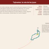 HTML5: Tajinastes: la ruta de las joyas