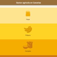 HTML5: Sector agrícola en Canarias