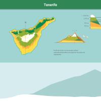 HTML5: Pisos de vegetación de Tenerife