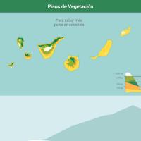 HTML5: Pisos de vegetación