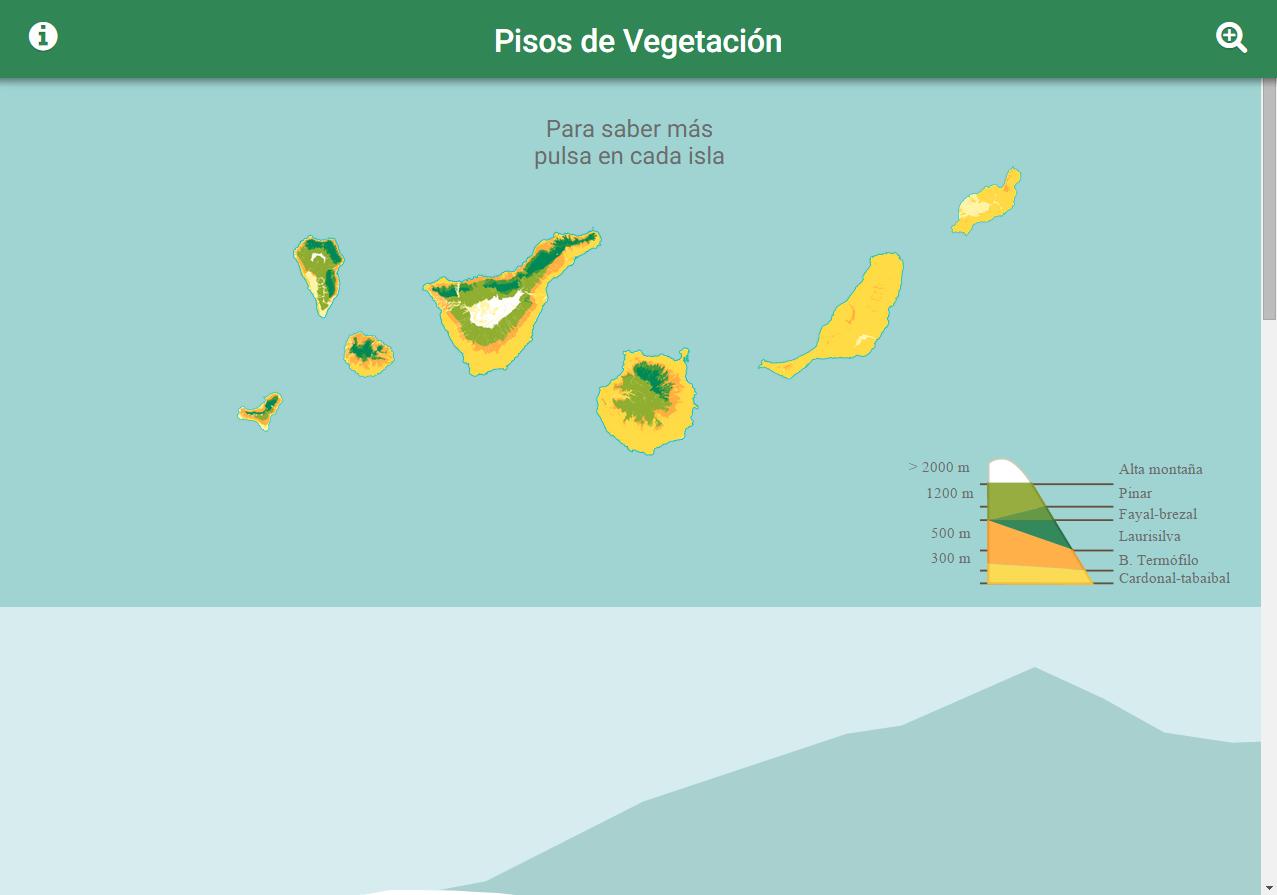 Alhel del teide recursos educativos digitales for Pisos de vegetacion canarias