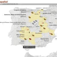 El mapa nuclear en España