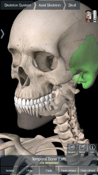 Essential Skeleton 4 » Recursos educativos digitales