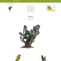 HTML5: tunera canaria