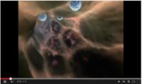 La vida interior de una célula.