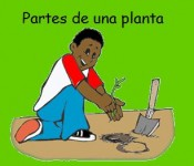 PartesPlanta