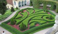 Mi jardín geométrico