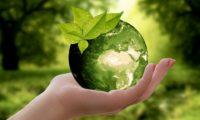 Hacia un futuro sostenible