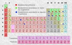Los elementos que nos rodean