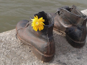 Diario de unos zapatos