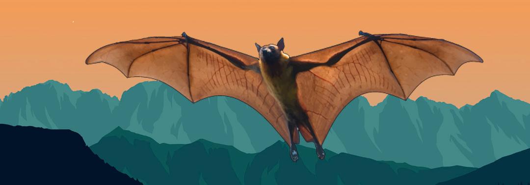 Murciélagos endémicos de Canarias.