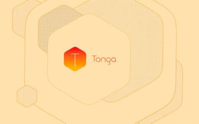 Descubre la nueva aplicación Tonga y realiza tus propias composiciones y diseños.