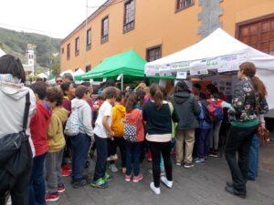 Feria Tegueste