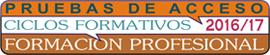 cf_formacion_profesional_largo