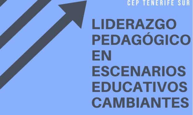 ACCIÓN PUNTUAL: LIDERAZGO PEDAGÓGICO EN ESCENARIOS EDUCATIVOS CAMBIANTES