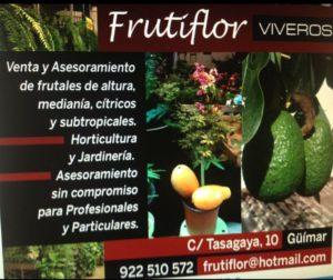 frutiflor
